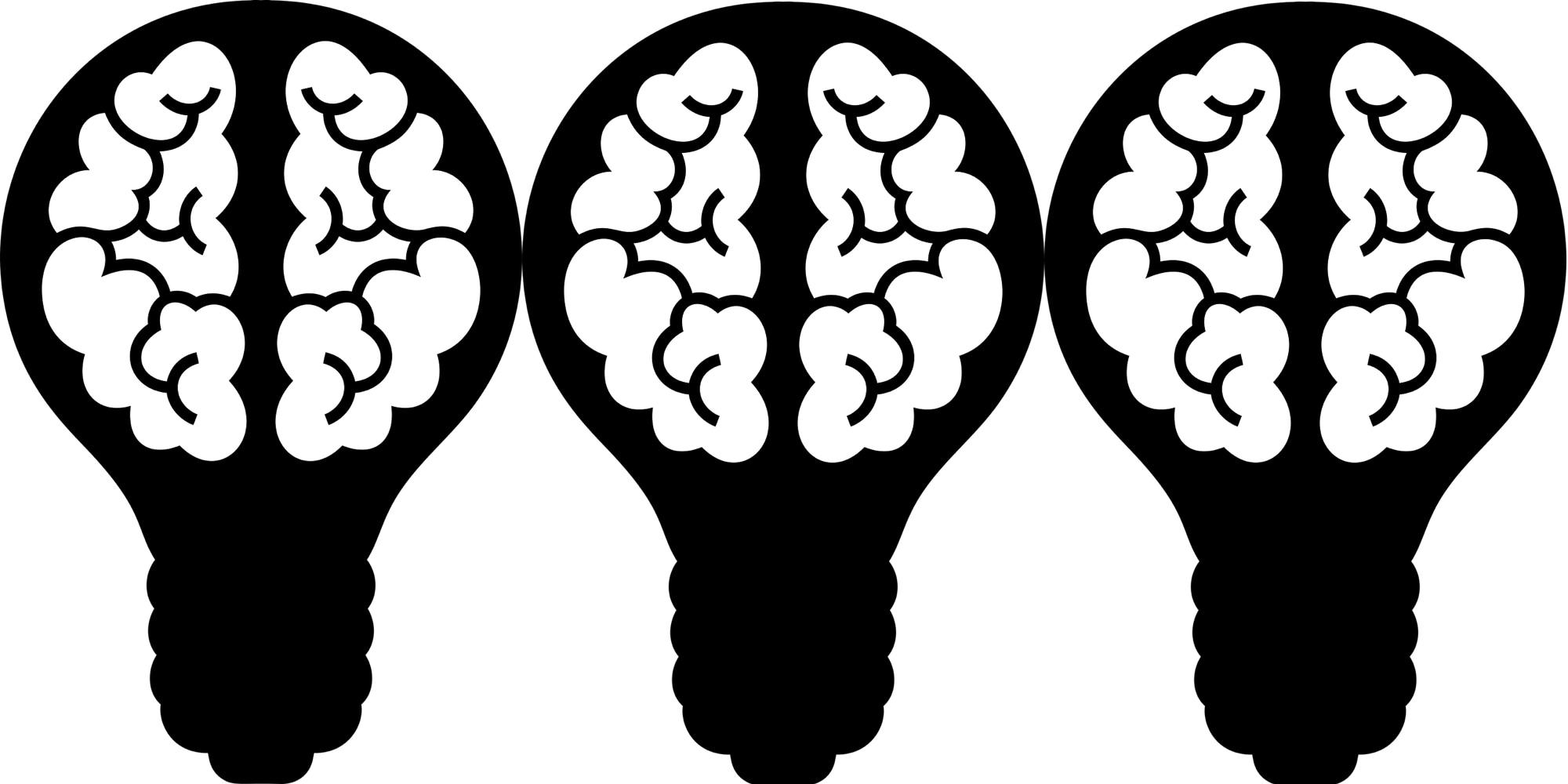 OptimHum - Optimizing Human Computation in Citizen Science